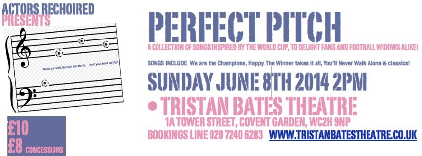 Perfect Pitch flyer Tristan Bates