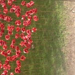 ceramic poppies tower of london